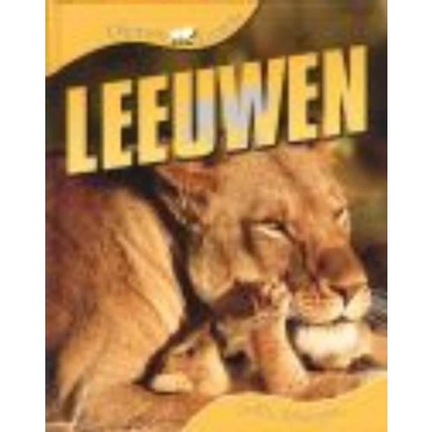 Leeuwen - Dierenleven