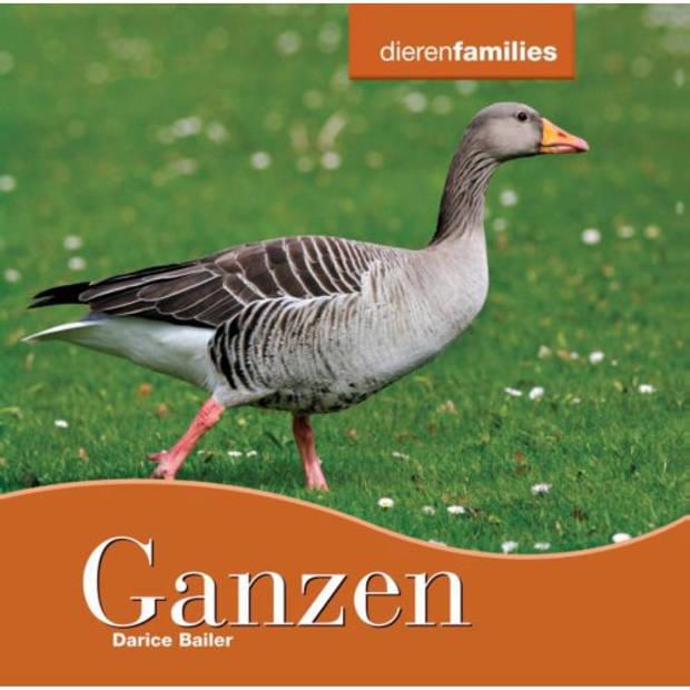 Ganzen - Dierenfamilies