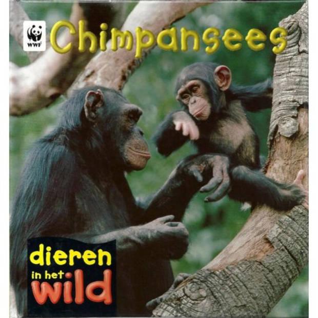 Chimpansees - Dieren In Het Wild