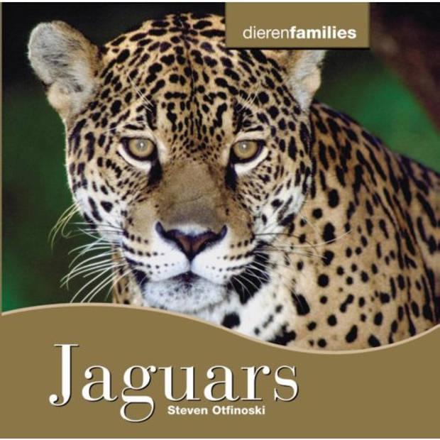 Jaguars - Dierenfamilies