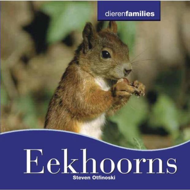 Eekhoorns - Dierenfamilies