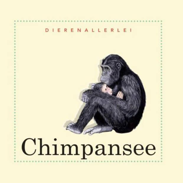Chimpansee - Dierenallerlei