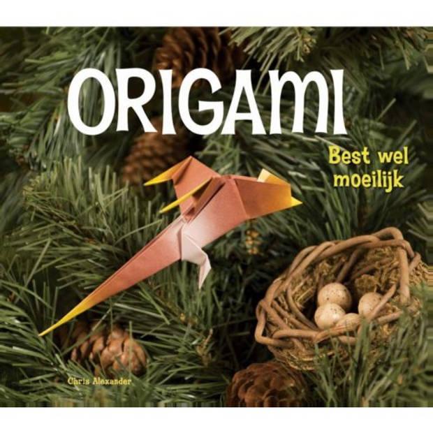 Best Wel Moeilijk - Origami
