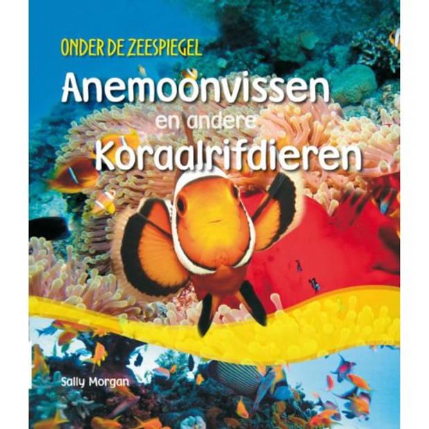 Anemonvissen En Andere Koraalrifdieren - Onder De