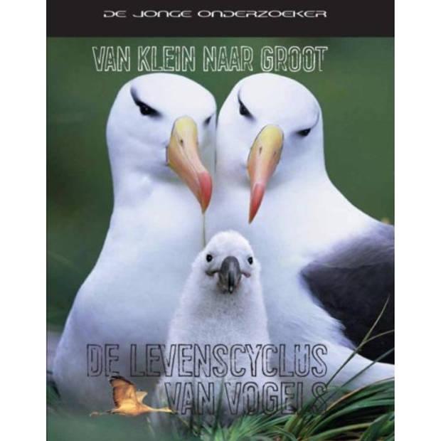 De Levenscyclus Van Vogels - Van Klein Naar Groot
