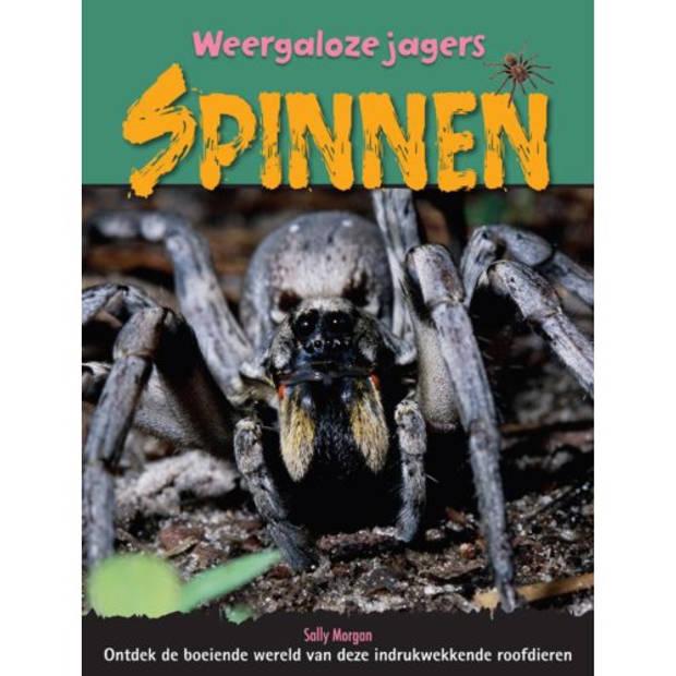 Spinnen - Weergaloze Jagers