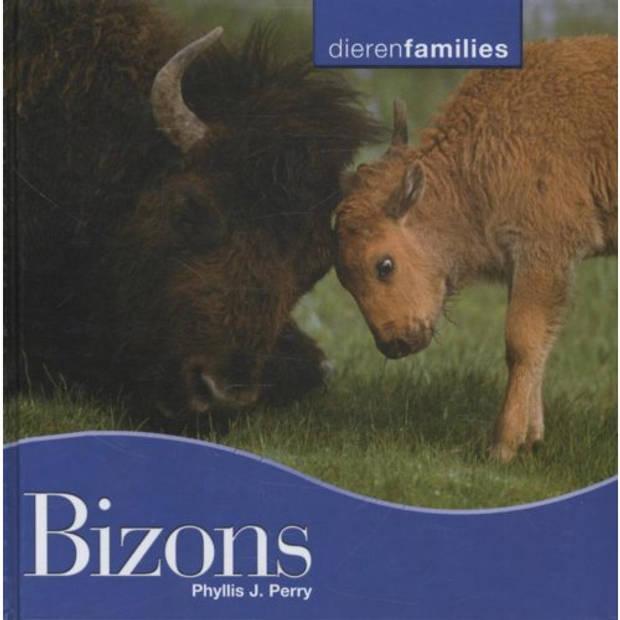Bizons - Dierenfamilies