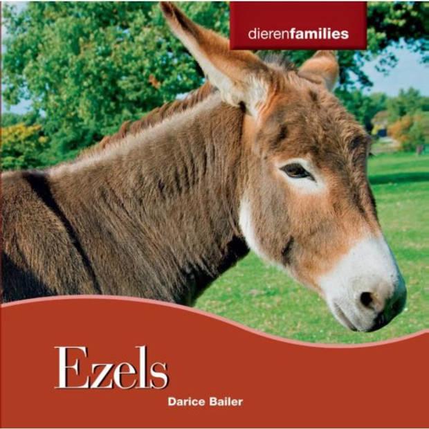 Ezels - Dierenfamilies