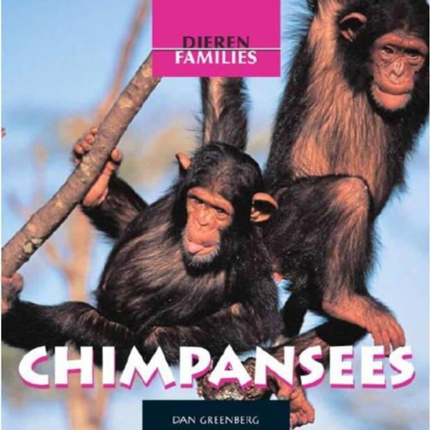 Chimpansees - Dierenfamilies