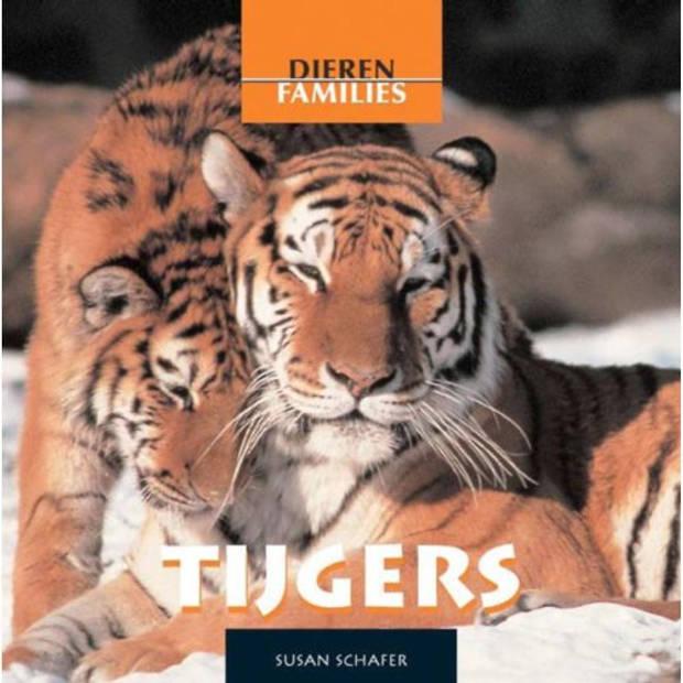 Tijgers - Dierenfamilies