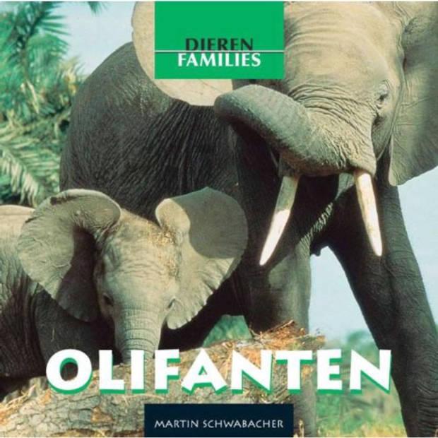 Olifanten - Dierenfamilies
