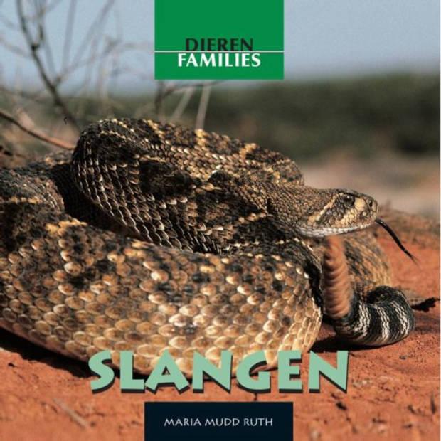 Slangen - Dierenfamilies