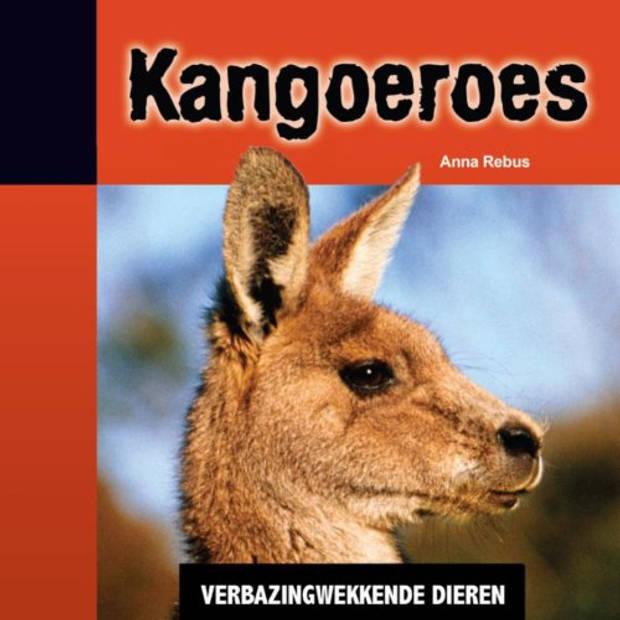 Kangoeroes - Verbazingwekkende Dieren