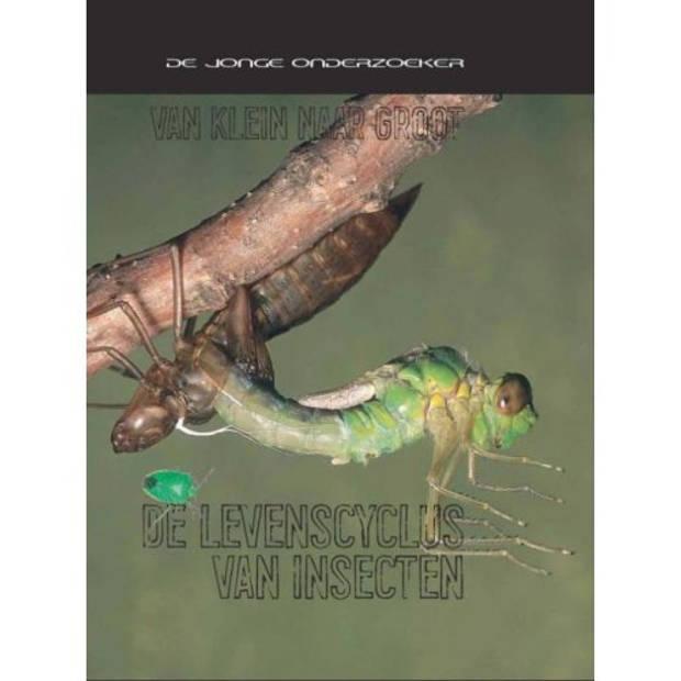 De Levenscyclus Van Insecten - Van Klein Naar