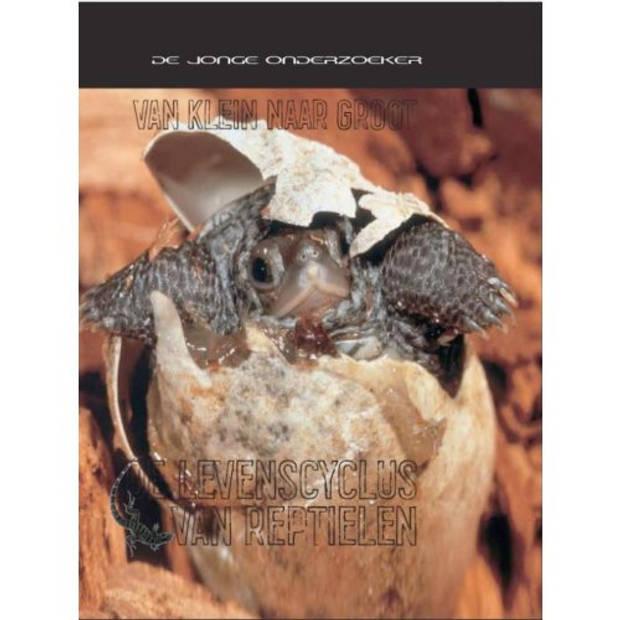 De levenscyclus van reptielen - Van klein naar
