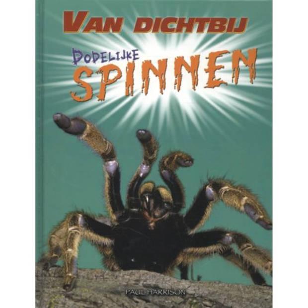 Dodelijke Spinnen - Van Dichtbij