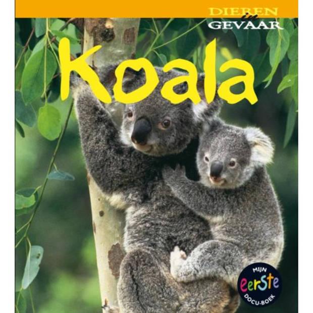 Koala - Dieren In Gevaar