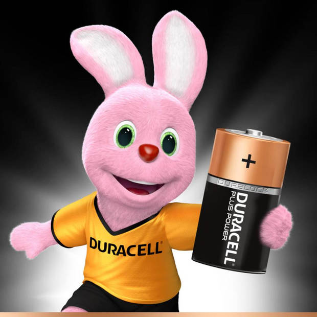 Duracell Plus Power D alkaline batterijen - 2 stuks