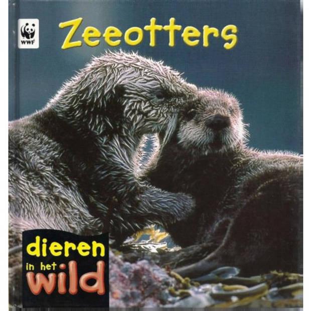 Zeeotters - Dieren in het wild