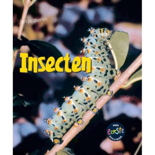 Insecten - Jonge Dieren