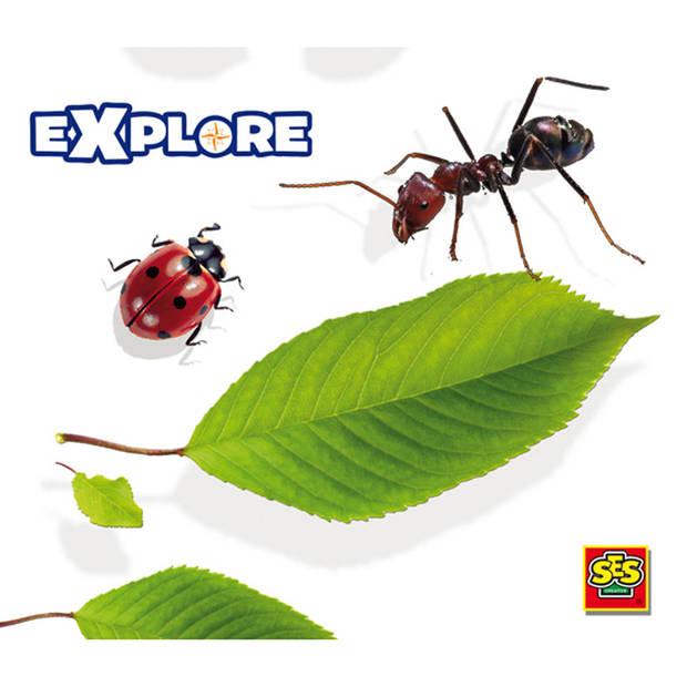 Ses Explore Insectenstad