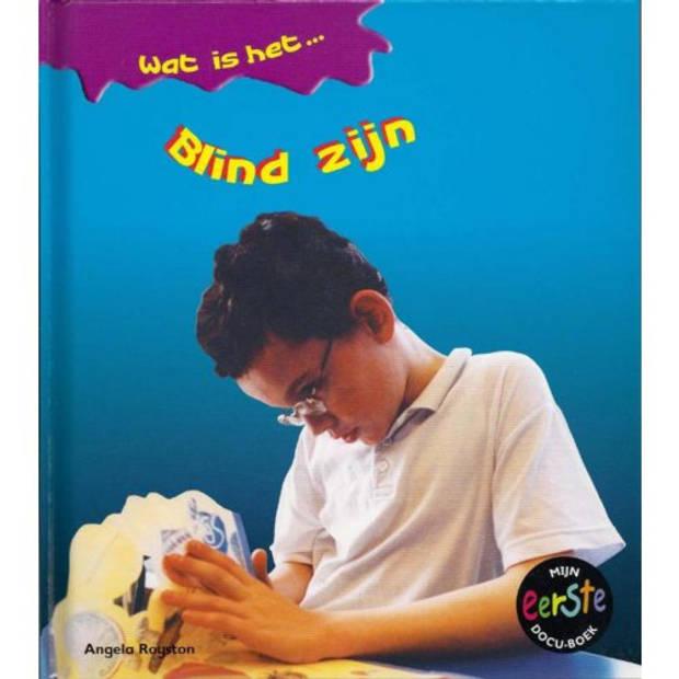 Blind Zijn - Wat Is Het...
