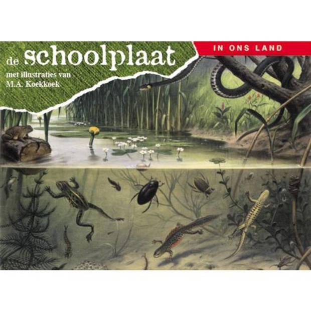 De Schoolplaat / In Ons Land