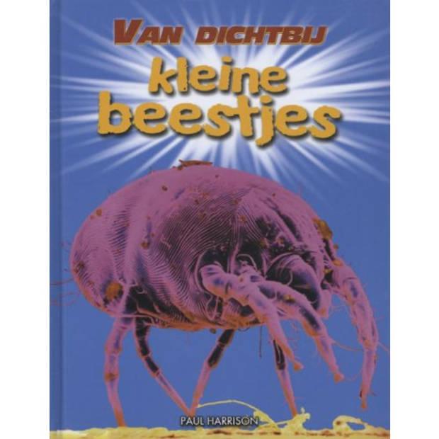 Kleine Beestjes - Van Dichtbij