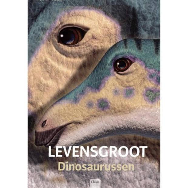 Levensgroot / Dinosaurussen