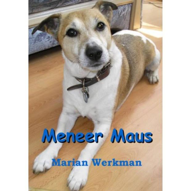 Meneer Maus