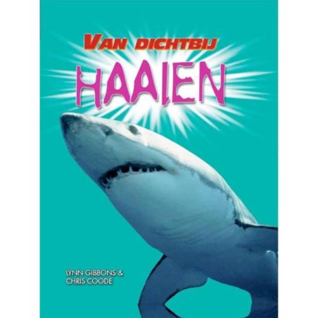 Haaien - Van Dichtbij