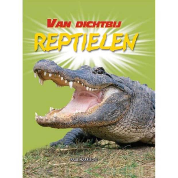Reptielen - Van dichtbij