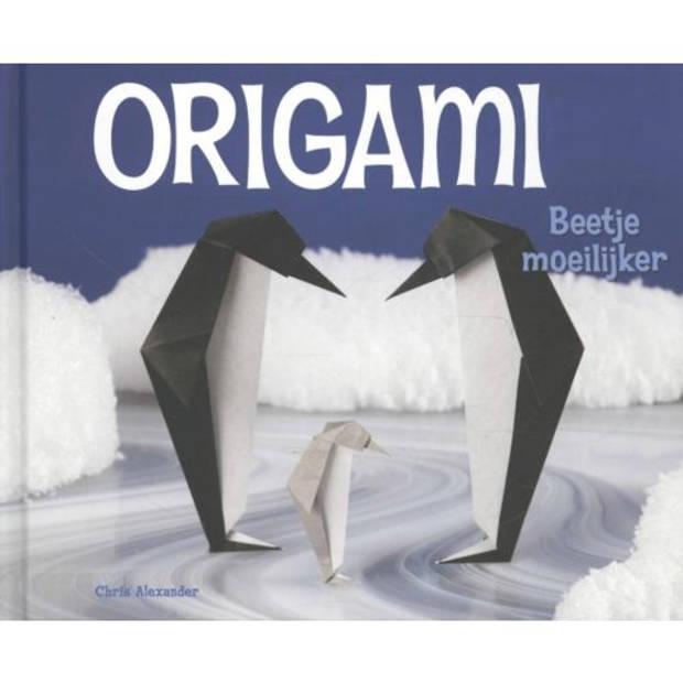Beetje Moeilijker - Origami