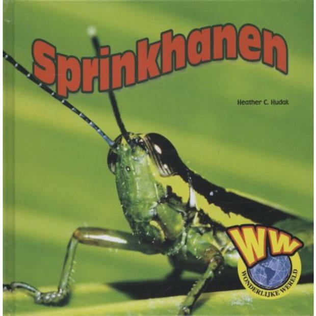 Sprinkhanen - Wonderlijke Wereld