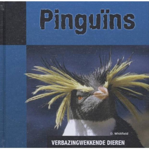 Pinguins - Verbazingwekkende Dieren