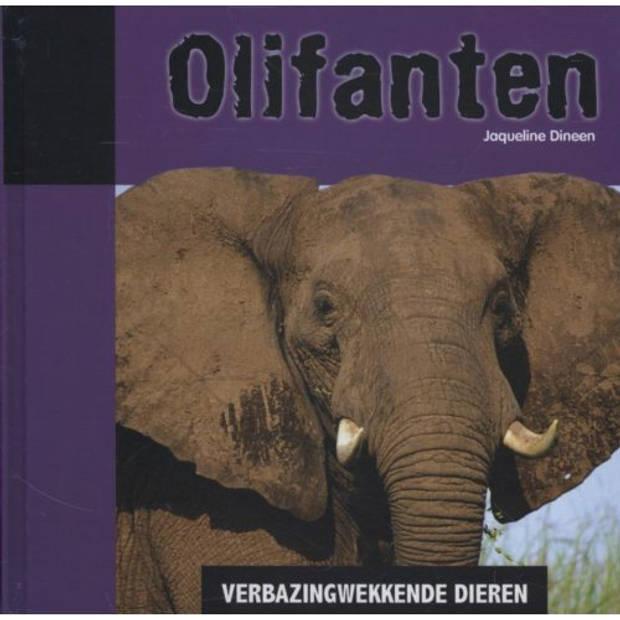 Olifanten - Verbazingwekkende Dieren