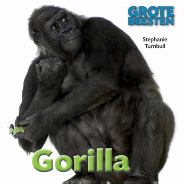 Gorilla - Grote Beesten