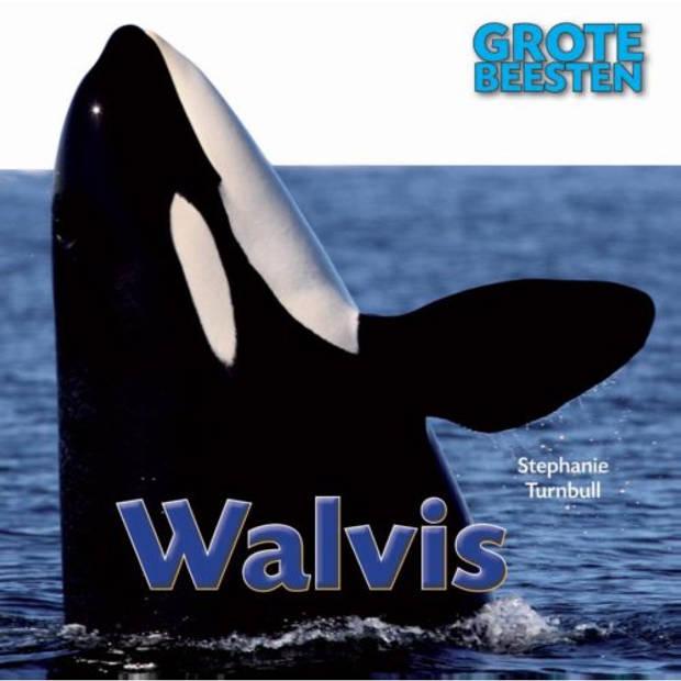 Walvis - Grote Beesten