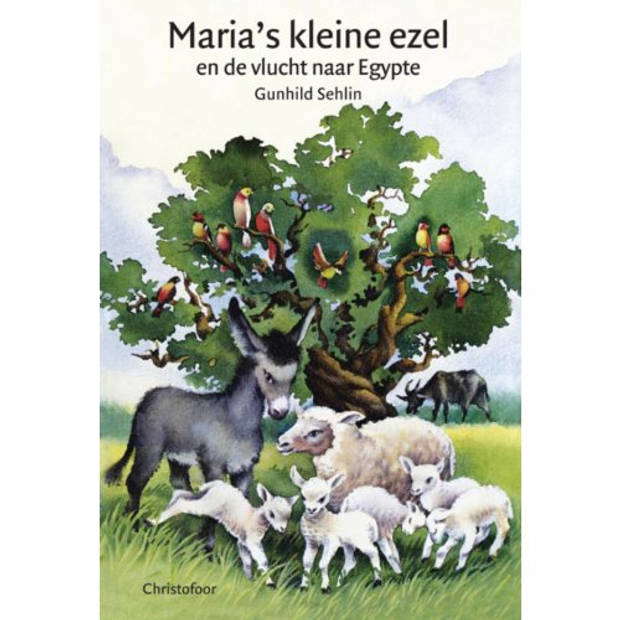 Maria's kleine ezel en de vlucht naar Egypte