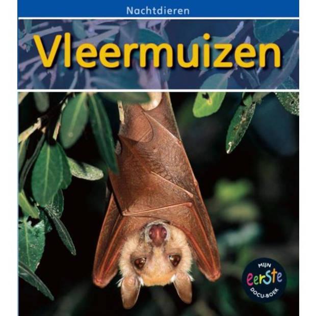 Vleermuizen - Nachtdieren
