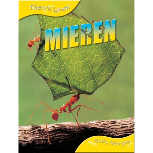 Mieren - Dieren Leven