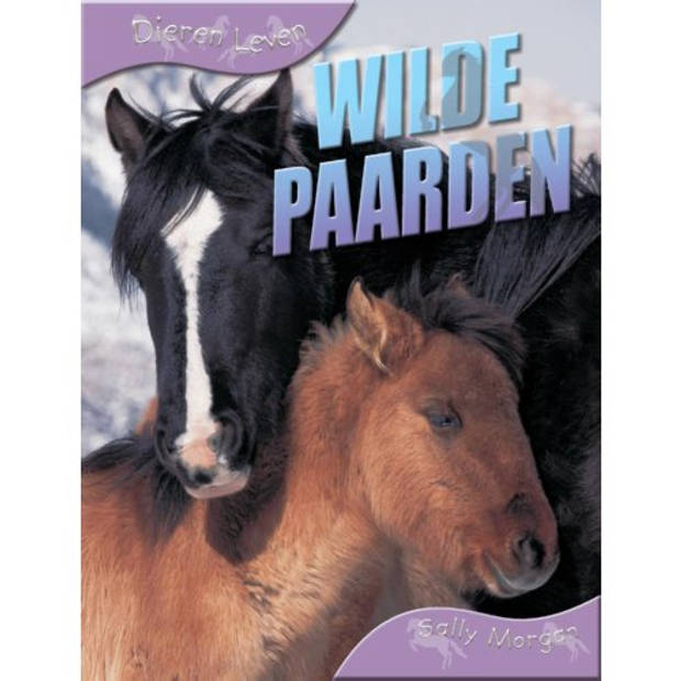 Wilde Paarden - Dieren Leven