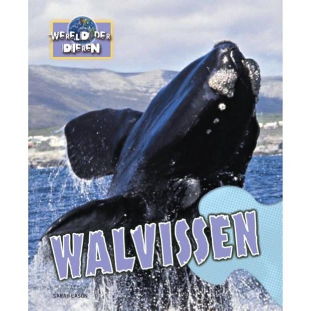 Walvissen - Wereld Der Dieren