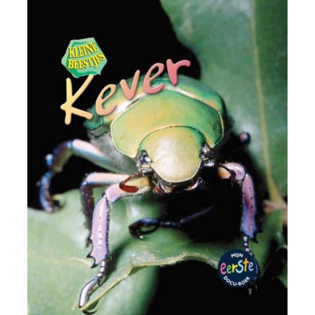 Kever - Kleine Beestjes