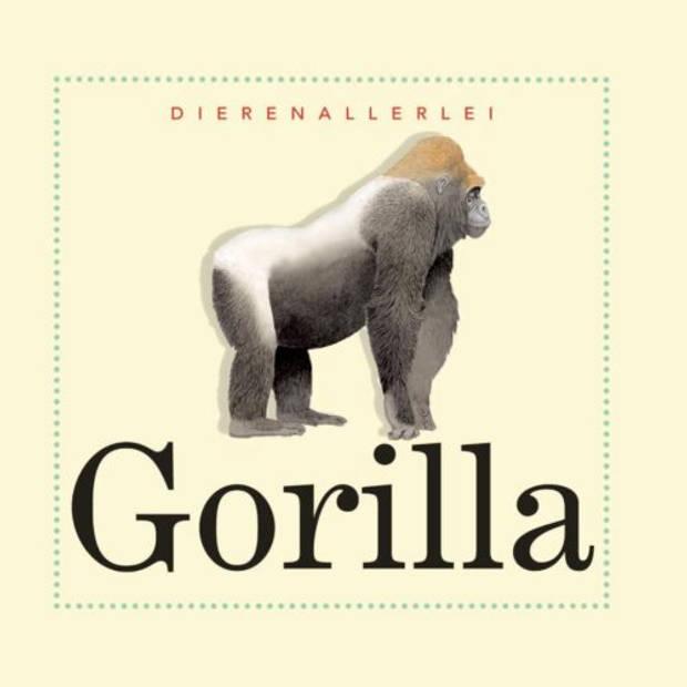 Gorilla - Dierenallerlei