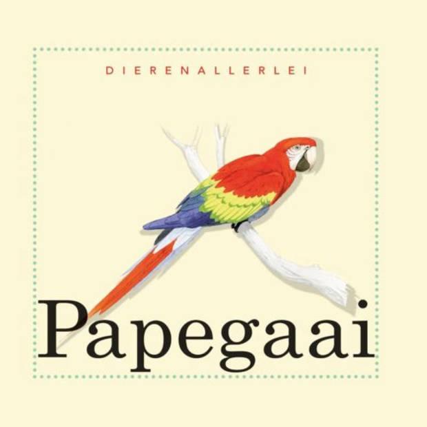 Papegaai - Dierenallerlei