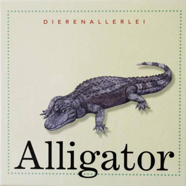 Alligator - Dierenallerlei