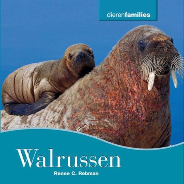 Walrussen - Dierenfamilies