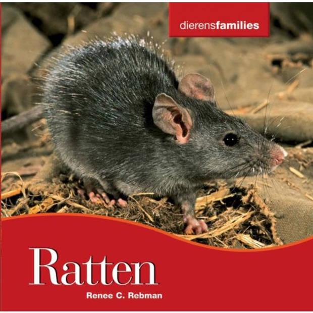 Ratten - Dierenfamilies