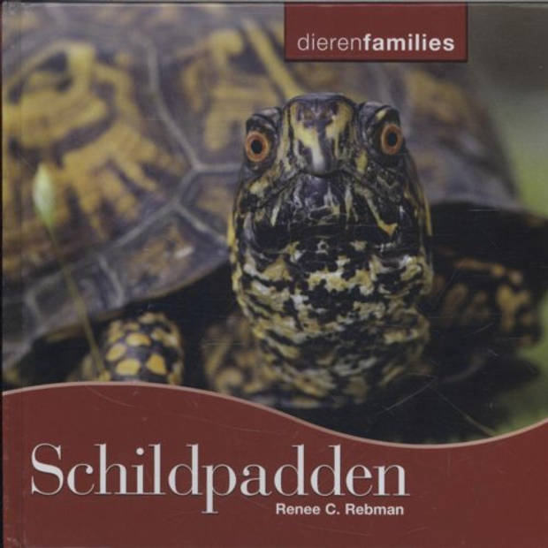 Schildpadden - Dierenfamilies